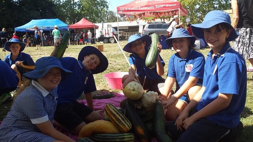 Harvest picnic 2