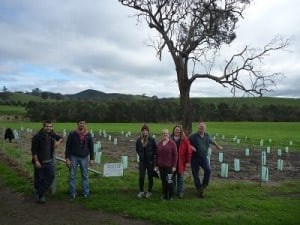 Planting at Strath Creek