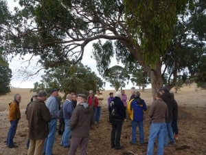 Attendees at a UGLN Mistletoe field day