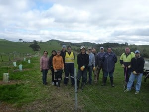 NAB volunteers at the Ralph property in Strath Creek