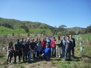 ANZ volunteers at Flowerdale.