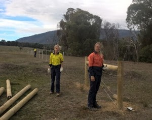 Fencing along the Andrews Creek.
