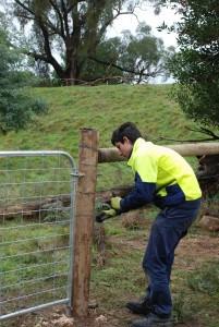 Joel fencing