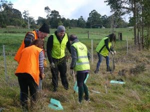 Volunteers planting on National Tree day.
