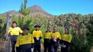 Green Army team members