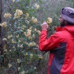 Botanist Geordie Scott-Walker from Abzeco