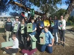 YHS nest boxes 2